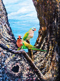Wildlife of the parrot on the tree Royalty Free Stock Image