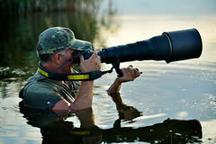 Wildlife photographer outdoor, standing in the water Stock Image