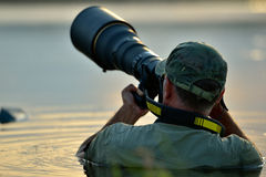 Wildlife photographer outdoor, standing in the water Stock Photography