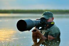 Wildlife photographer outdoor, standing in the water Stock Photos