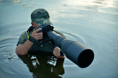 Wildlife photographer outdoor, standing in the water Royalty Free Stock Photo