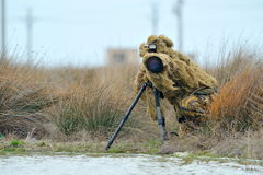 Wildlife photographer outdoor Stock Images