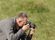 Wildlife photography Stock Photos