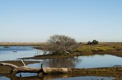 Wildlife Preserve Landscape Royalty Free Stock Photography