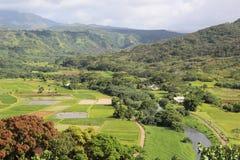 Wildlife refuge and beautiful landscape. Hanalei National Wildlife Refuge for waterbirds and beautiful landscape on Kauai Stock Image