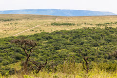 Wildlife Reserve Landscape Stock Image