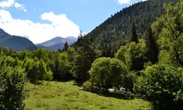 Wildlife sanctuary. The valley on the northern slopes of the Greater Caucasus.  Photo taken on: July 27 Saturday, 2013 Stock Photo