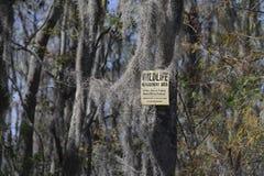Wildlife sign in the swamp Stock Photo