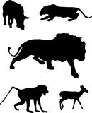 Wildlife silhouettes. This is a vector illustration of some wildlife silhouettes Royalty Free Stock Photography