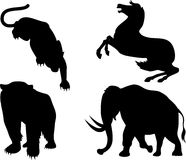 Wildlife silhouettes Royalty Free Stock Photo