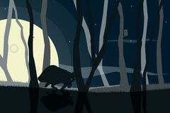 Wildlife silhouettes scene at the night forest Royalty Free Stock Photography