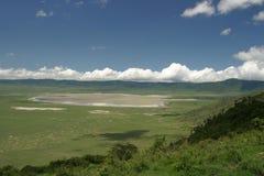Wildlife in tanzania. Wildlife in a safari in tanzania - africa ngororo Royalty Free Stock Photo