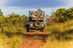 Wildlife Tourism Vehicle Bush Stock Photo
