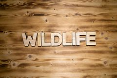 WILDLIFE word made of wooden letters on wooden board. WILDLIFE word made of wooden block letters on wooden board, top view stock photography