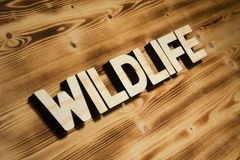 WILDLIFE word made of wooden letters on wooden board. WILDLIFE word made of wooden block letters on wooden board, top view royalty free stock image