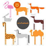 Wildlife zoo collection of cute cartoon animals. Big fauna of the world icon set isolated. Wild characters.  vector illustration