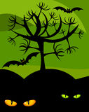 Wildness de Halloween Foto de Stock Royalty Free