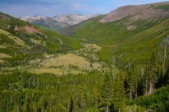 Wildness du Montana Photos libres de droits