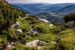 Wildnis der Karpatenberge Stockbild