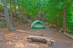 Wildnis-Lager im Nordholz Lizenzfreie Stockbilder