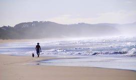 Wildnis-Lagune - Garten-Weg - Südafrika Stockfoto