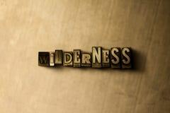 WILDNIS - Nahaufnahme des grungy Weinlese gesetzten Wortes auf Metallhintergrund Stockfotografie