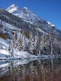 Wildnis-Schnee Stockfoto