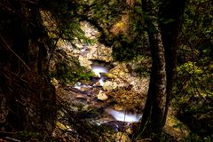 Wildnis von Rumänien mit einem Gebirgsbach Stockbild
