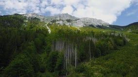 Wildnissgebiet DÃ ¼ rrenstein, Austria zdjęcie wideo