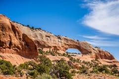 Wildon arch utah Royalty Free Stock Image