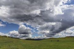 Wildwood公园在绍森欧克斯加利福尼亚 库存照片