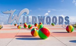Wildwood Royalty Free Stock Photo