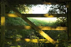 Wildwood gate. Old wooden gate leading to field Stock Image