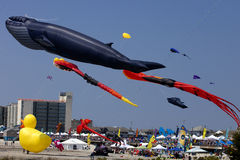 Wildwood International Kite Festival Royalty Free Stock Image