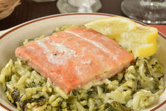 Wile salmon fillet Stock Image
