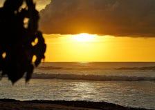 Wilerness Puerto Rico Sunsets lizenzfreies stockbild