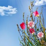 Wilg, anjers en tulpen Stock Afbeelding