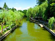 Wilgen door het Culturele Landschap van het het Westenmeer van Hangzhou royalty-vrije stock afbeelding