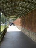 Wilhelma ogródy, Stuttgart fotografia royalty free