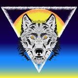 Wilk i słońce ilustracja wektor