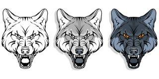 Wilk, odizolowywający na białych tle, colour ilustraci, stosownych jako logo lub drużyny maskotka, niebezpieczny lasowy drapieżni ilustracji