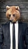 Wilk w kostiumu, portret, biznesowy pojęcie Obrazy Stock