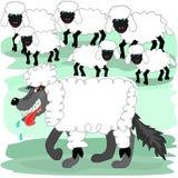 Wilk w sheeps odziewać Fotografia Stock