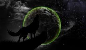 Wilka wycia księżyc w pełni Zdjęcia Royalty Free
