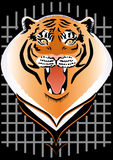 At will!. The head of a tiger with open mouth on the background grid Stock Photos