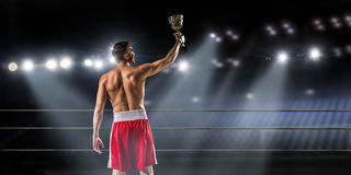 He will be a champion . Mixed media Royalty Free Stock Photos