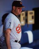 Will Clark, Baltimore Orioles, prima base Fotografia Stock Libera da Diritti