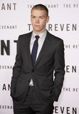 Will Poulter. HOLLYWOOD, CA - Will Poulter at the Los Angeles premiere of 'The Revenant' held at the TCL Chinese Theatre in Hollywood, USA on December 16, 2015 Royalty Free Stock Photo