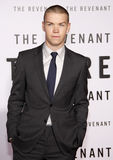 Will Poulter. HOLLYWOOD, CA - Will Poulter at the Los Angeles premiere of 'The Revenant' held at the TCL Chinese Theatre in Hollywood, USA on December 16, 2015 Royalty Free Stock Photography