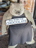 Will work for chocolate. Friendly bear looking for a chocolate handout Stock Photography